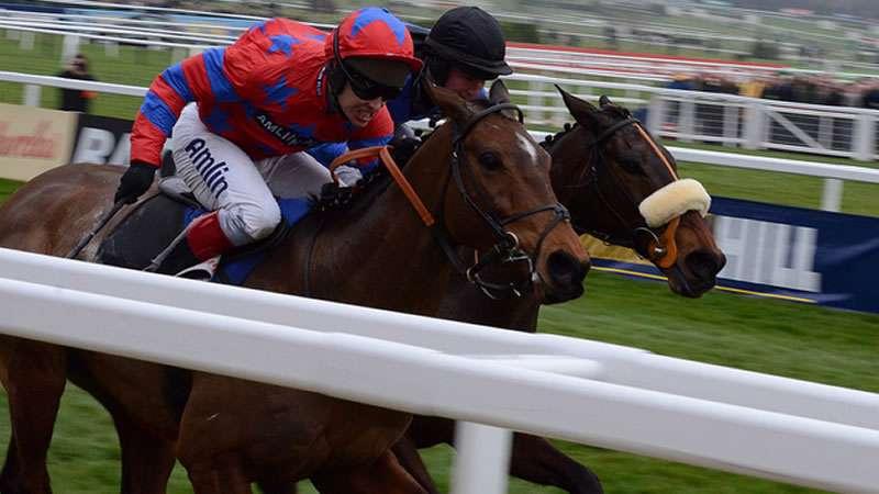 balthazar king grand national 2021 betting