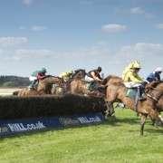 horse-steeplechasing