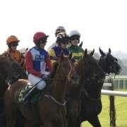 jockeys-lineup