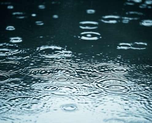 rain-soft-going