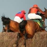 sam-waley-horse-ss